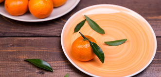 Brunch of tangerines Royalty Free Stock Photo