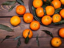 Brunch of tangerines Royalty Free Stock Photography