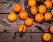 Brunch of tangerines Stock Image