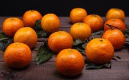 Brunch of tangerines Stock Photo