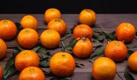 Brunch of tangerines Stock Photos