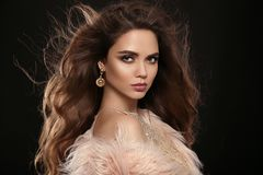 Brune dans le manteau de fourrure de mode Portrait de beauté de b sexy magnifique photo libre de droits