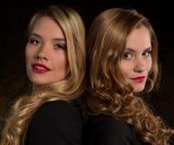 Brune et blonde Images stock
