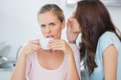 Brune indiquant le secret à son ami tout en buvant du café Photographie stock libre de droits