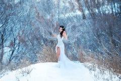 Brune luxueuse dans une robe blanche image libre de droits