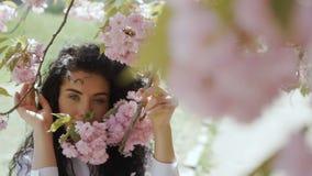 Brune sensuelle et rose Sakura banque de vidéos