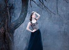 Brune tendre stupéfiante, dame dans une longue robe noire avec les bras et les épaules ouverts nus, seule la fille dans le froid  photographie stock
