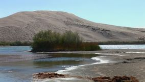 Bruneau sand dunes idaho 24 dunes lake stock footage