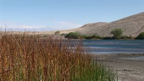 Bruneau sand dunes idaho 67 lake blue. Bruneau Sand Dunes Idaho 67 stock video