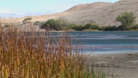 Bruneau sand dunes idaho 40 pan across. Bruneau Sand Dunes Idaho 40 stock video