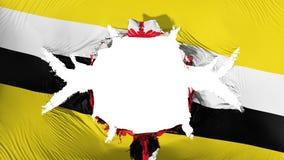 Brunei-Flagge mit einem großen Loch vektor abbildung
