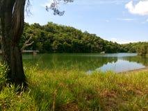 Brunei Tasek Lama Park royalty-vrije stock foto's