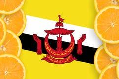 Bruneisk flagga i vertikal ram för citrusfruktskivor royaltyfri fotografi