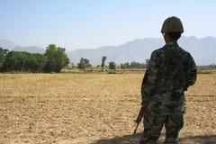 Bruner στο Πακιστάν στοκ φωτογραφίες