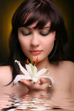 brunetka kwiaty lily white wody Zdjęcie Stock