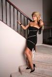 brunetki 25 seksowna kobieta Zdjęcia Stock
