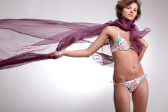 brunetki bikini dziewczyna Obraz Stock