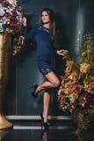 Brunetki dziewczyna pozuje w błękit sukni z koronką Zdjęcie Stock