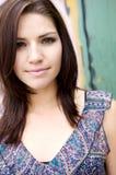 brunetki piękna krawędź Obrazy Stock