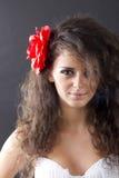 brunetki piękna dziewczyna Zdjęcie Royalty Free