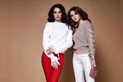 Brunett riccio lungo sexy della donna di affari del modello di moda di fascino due Immagine Stock