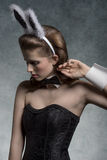 Brunette γοητείας playgirl Στοκ Εικόνες