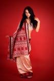 brunette η ινδική Sari Στοκ Εικόνες