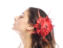 Brunette Royalty Free Stock Photography