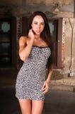 Brunette Royalty Free Stock Photo