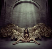 Brunette angel sitting on the dark floor Stock Photography