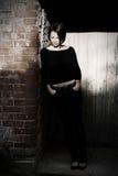 Brunette attirant dans les ombres Images stock