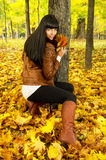 Brunette autumn keeps the leaves Stock Images