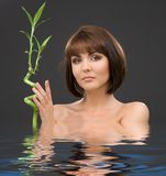 Brunette with bamboo Royalty Free Stock Photography