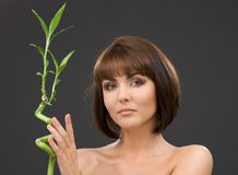 Brunette with bamboo over grey Stock Images