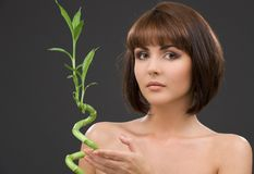Brunette with bamboo over grey Royalty Free Stock Photo