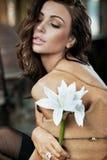 Brunette beauty Royalty Free Stock Image