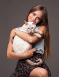 Brunette beauty with cat. Stock Photos