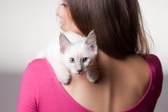 Brunette beauty with cute kitten. Stock Photography