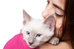 Brunette beauty with cute kitten. Royalty Free Stock Photo