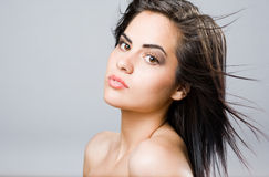 Brunette beauty with windswept hair. Stock Images
