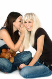 Brunette and the blonde Royalty Free Stock Images