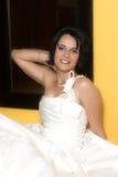 Brunette Bride Stock Photography