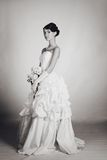 Brunette bride Stock Image