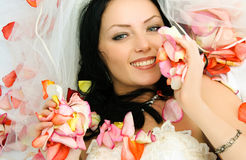 Brunette bride on the bed covered with rose leaves Stock Photos