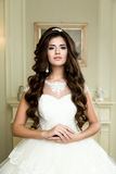 Brunette  Bride portrait. Beautiful brunette  Bride portrait wedding makeup and hairstyle with diamond crown, fashion bride model jewelry and beauty female face Stock Photos