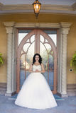 Brunette bride in a white dress on the wedding day. Brunette bride in a white dress Stock Images