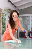 Brunette cleaning glass table Stock Images