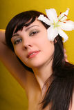 Brunette com as flores do lírio branco Fotografia de Stock Royalty Free
