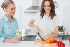 Brunette cooking while her friend having wine Royalty Free Stock Photos