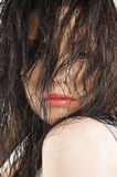 Brunette covering face with hair Stock Photography